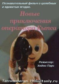 Новые приключения оператора Кыпса